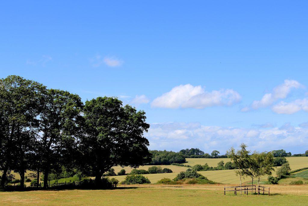 Glebe Farm gallery - Gallery