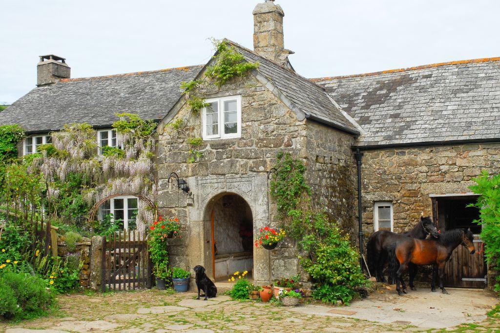 Corndonford Farm gallery - Gallery