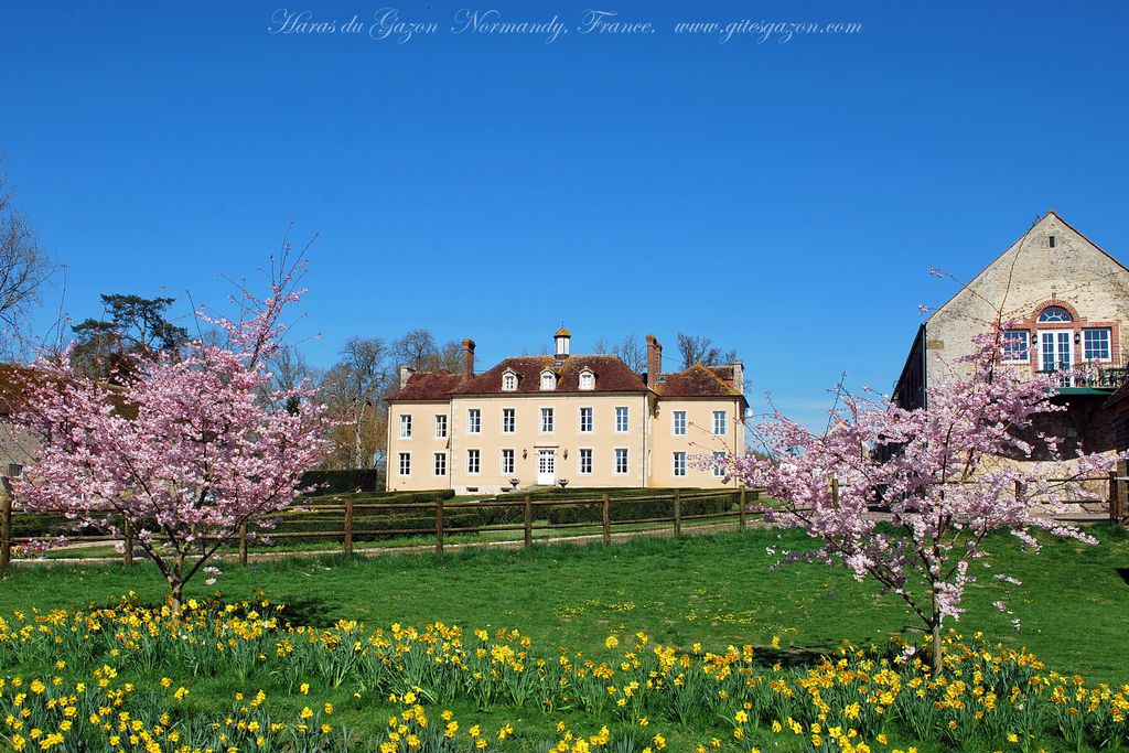Haras du Gazon - Gallery