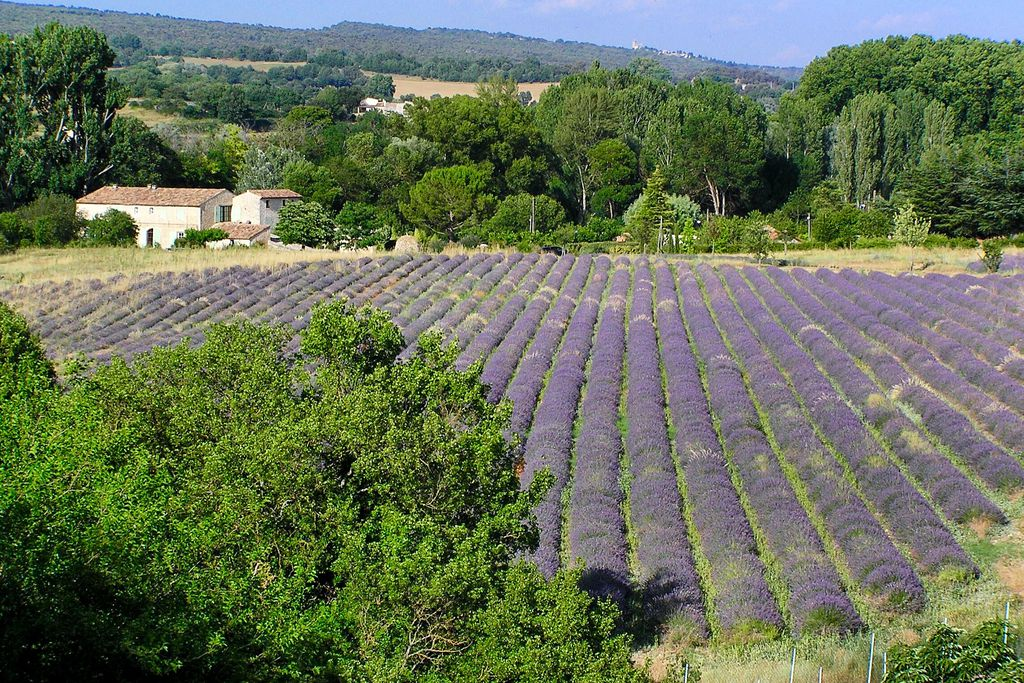 Hotels, cottages and special places in Provence - Alps - Riviera