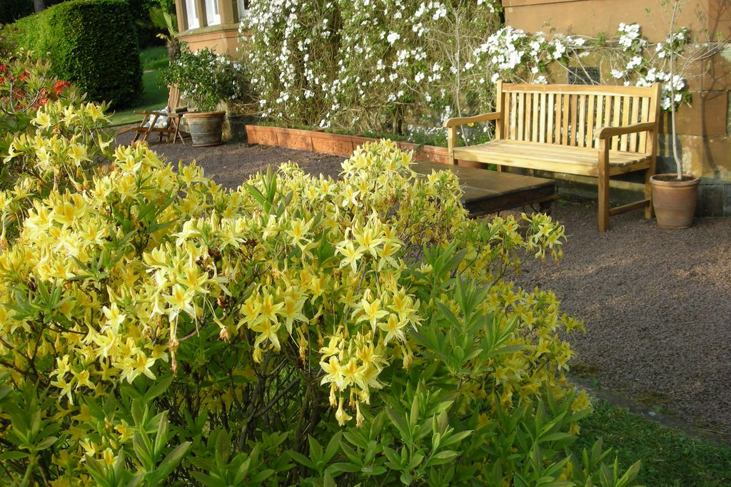 Kirkcudbright Bed And Breakfast Dog Friendly