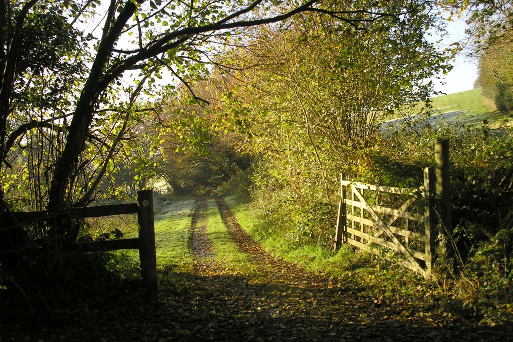 Lane to East Penrest Farm in Cornwall