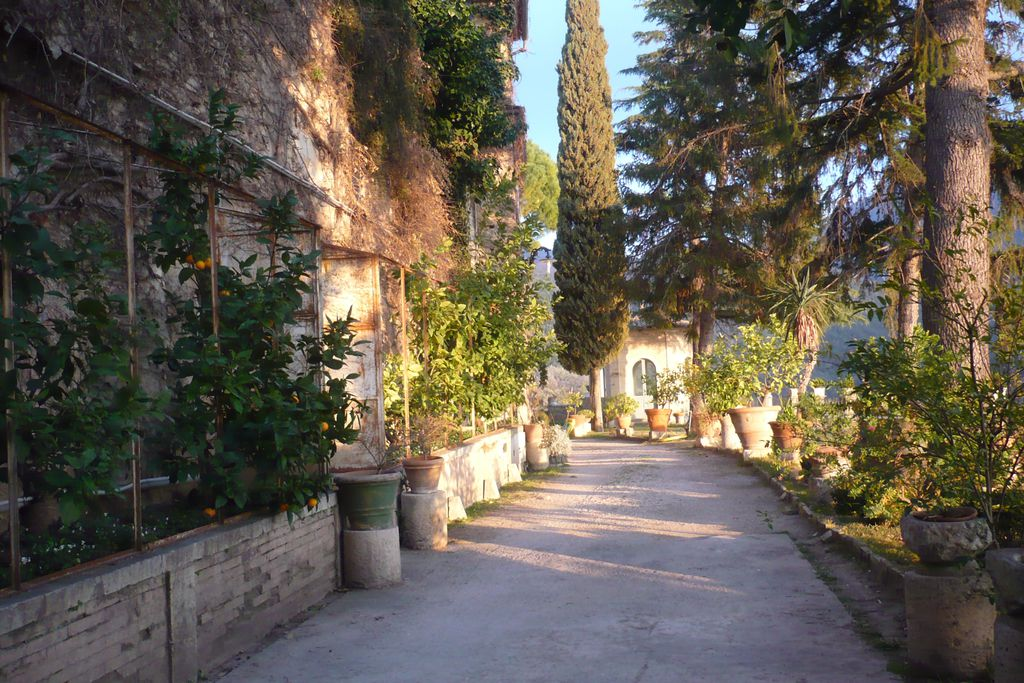 Orange-tree lined entrance to La Casa nella Roccia in Roccantica, Italy