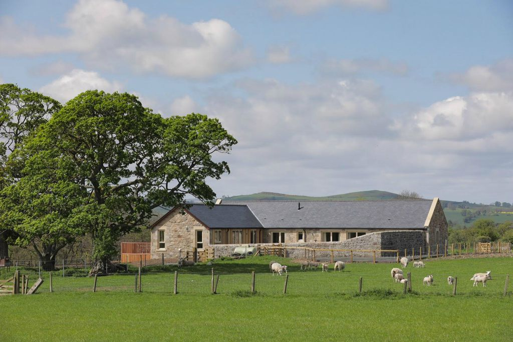 Teal House Learchild in the Northumbrian countryside with sheep in the field
