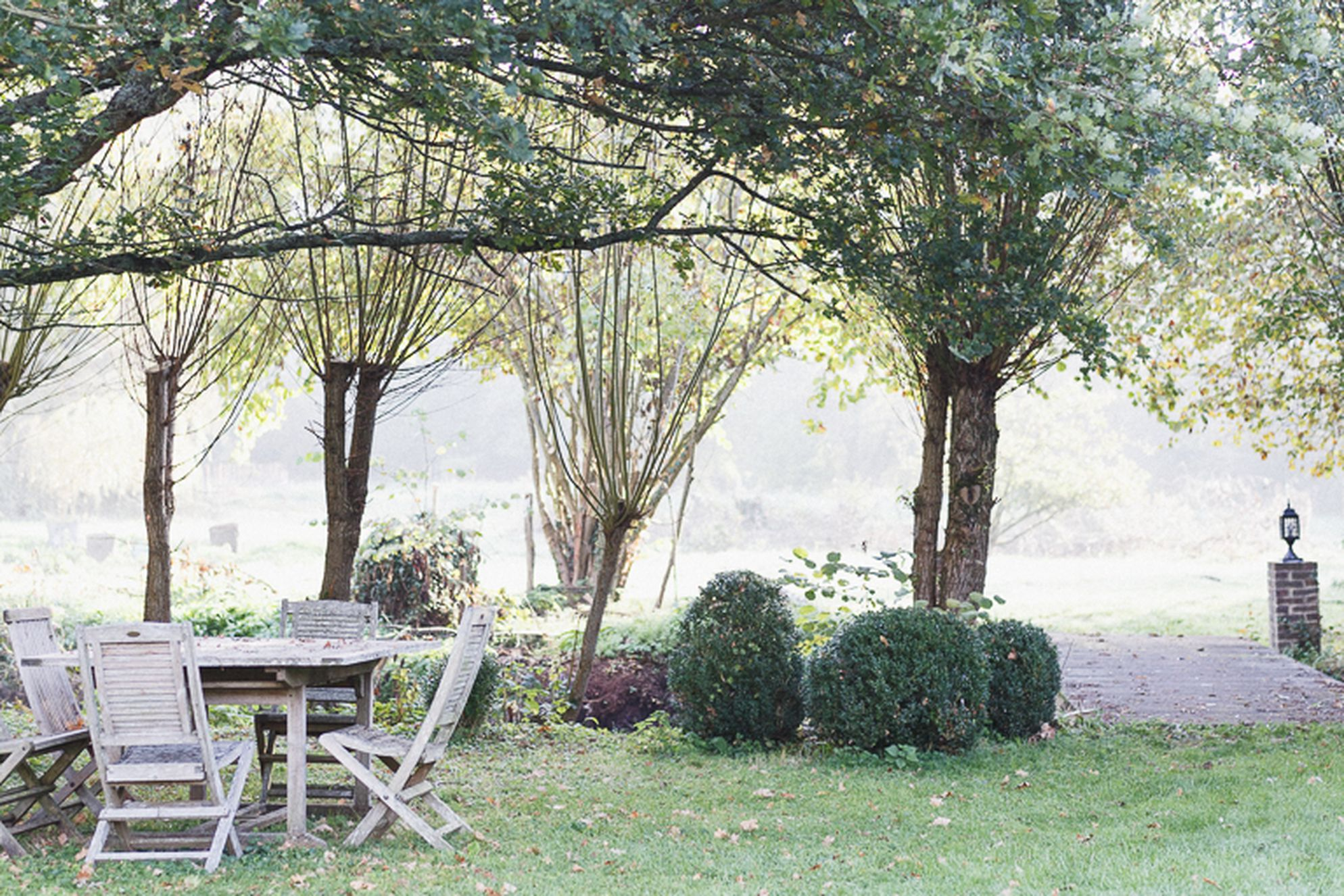 Garden with outside table and chairs amongst the trees