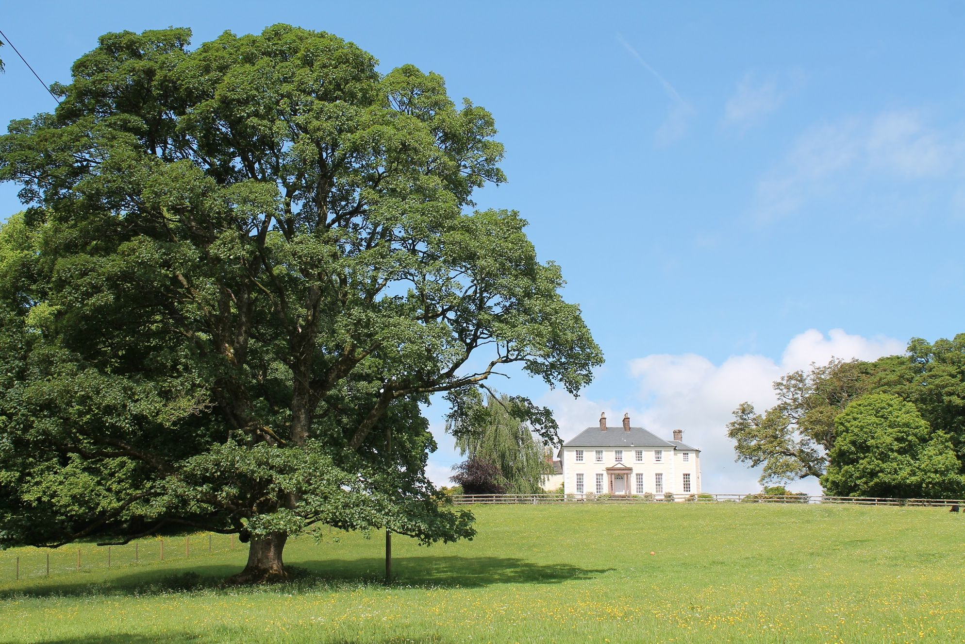 View of Knockhill House from across the grounds. Lots of beautiful lush green grass and wildlife roaming
