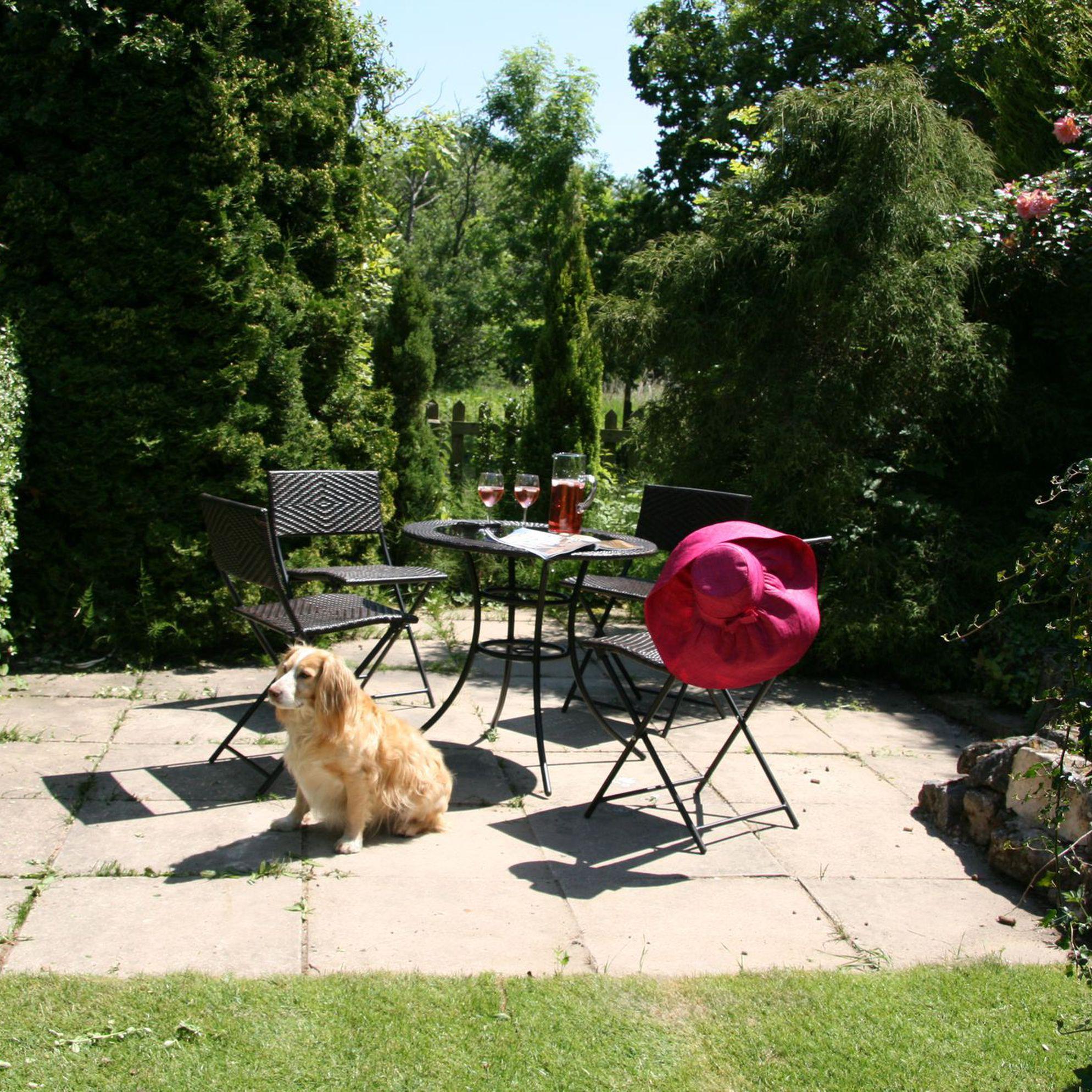 Dog-friendly holidays in Norfolk