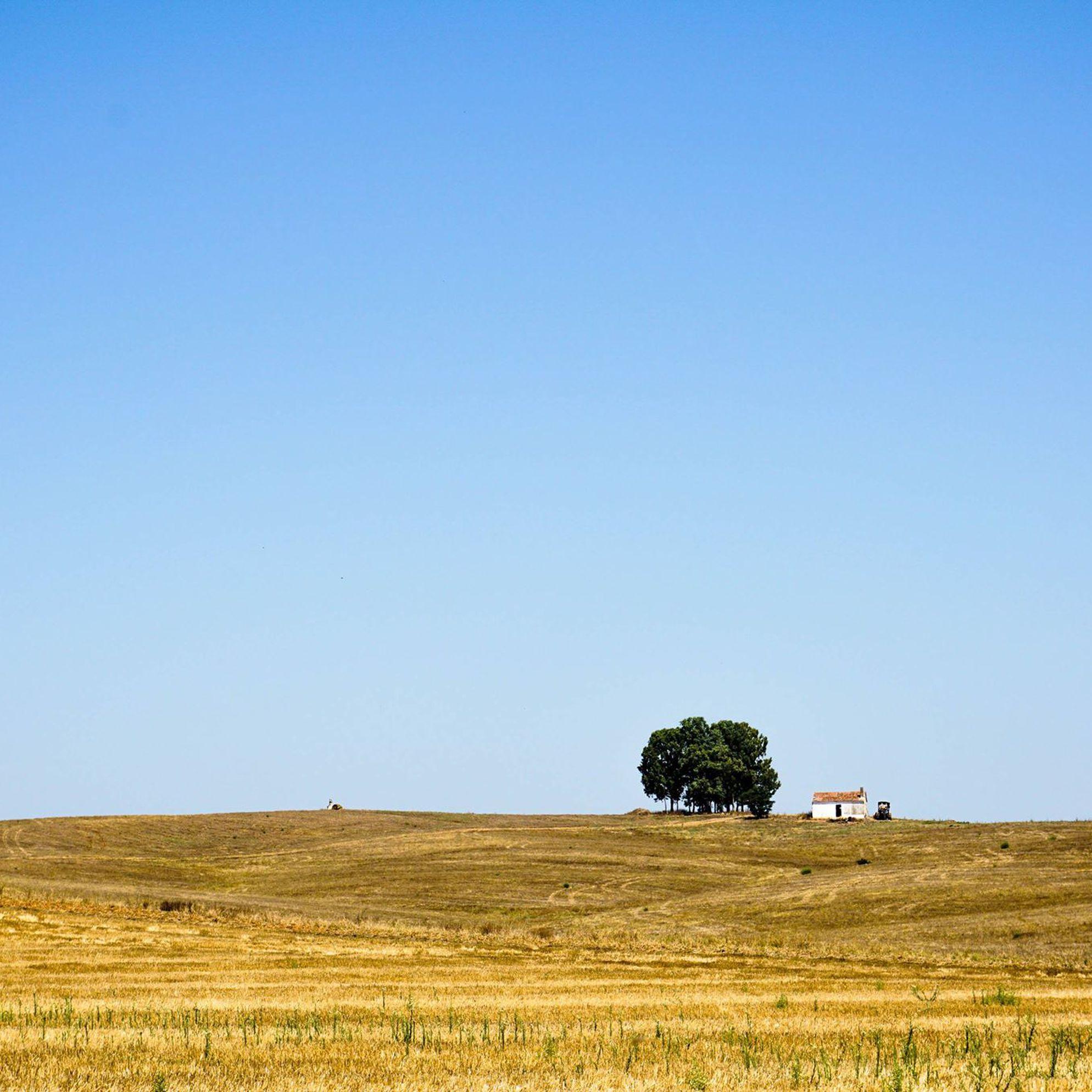 Alentejo: Portugal's wildest region on a budget