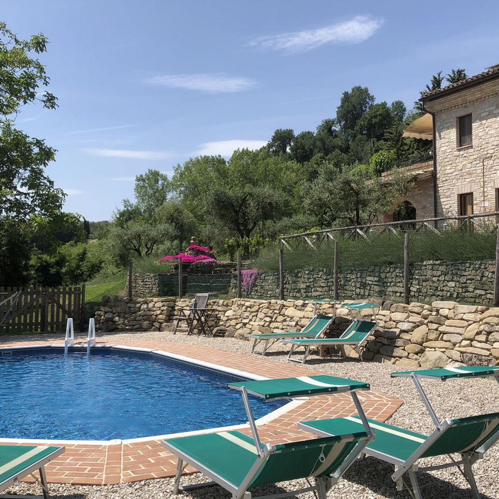 Villa in the Vineyard
