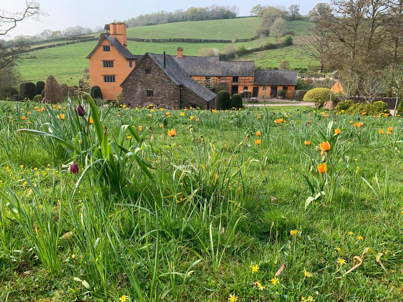 Arne Maynard shares the experiences of his garden during spring